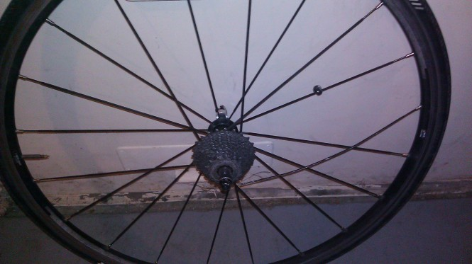 Mavic Busted Spoke